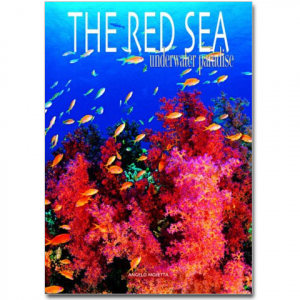 The Red Sea - Underwater Paradise