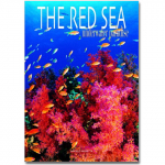 The Red Sea - Unserwater Paradise