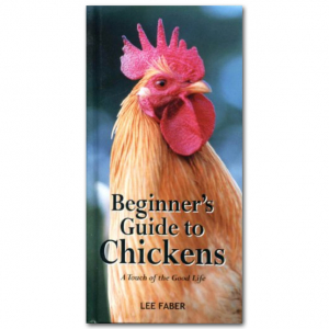 Beginners Guide to Chickens