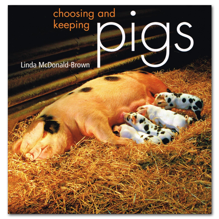 Choosing & Keeping Pigs