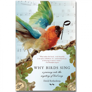 Why The Birds Sing
