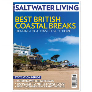 #3 Best British Coastal Walks