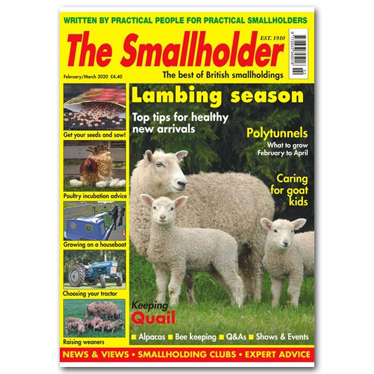 The Smallholder
